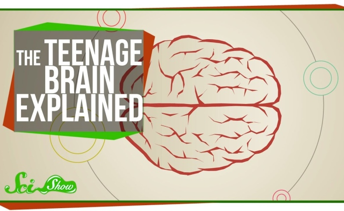 Trying to Understand a TeenageBrain
